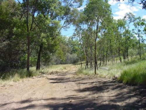 Property For Sale Tenterfield 2372 NSW 9