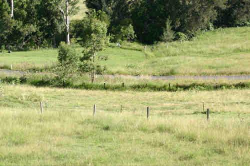 Property For Sale Kyogle 2474 NSW 7