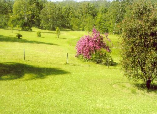Property For Sold Hannam Vale 2443 NSW 8
