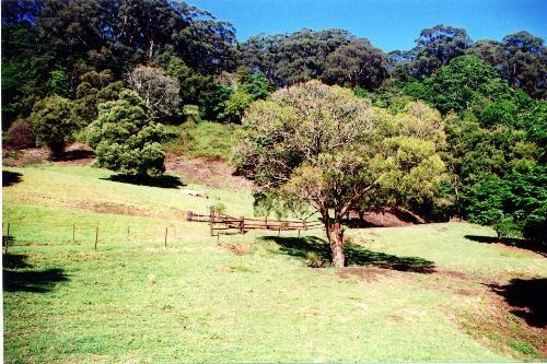 Property For Sold Jamberoo 2533 NSW 1