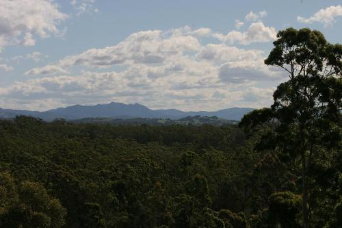 Property For Sale Pampoolah 2430 NSW 10