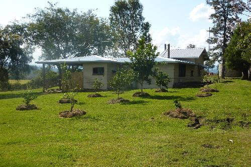 Property For Sale Kyogle 2474 NSW 12