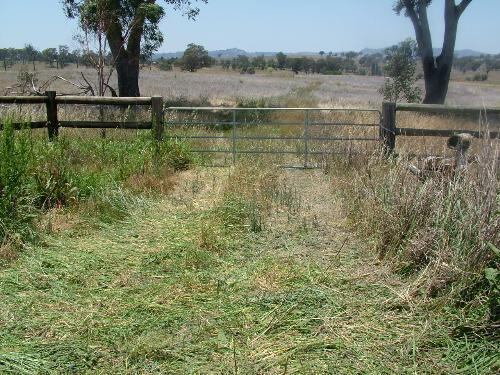 Property For Sale Tamworth 2340 NSW 4