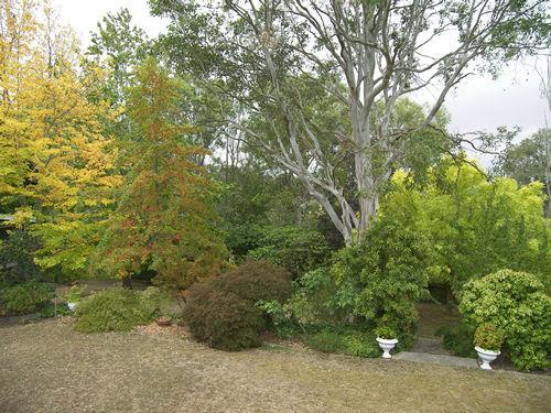 Property For Sold Moss Vale 2577 NSW 11