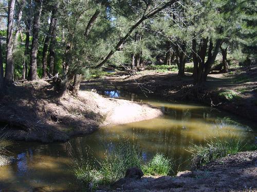 Property For Sold Mendooran 2842 NSW 1