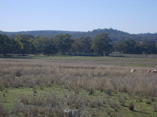 Property For Sold Mendooran 2842 NSW 5