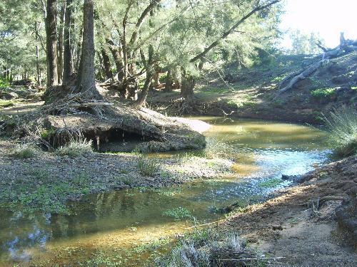 Property For Sold Mendooran 2842 NSW 10