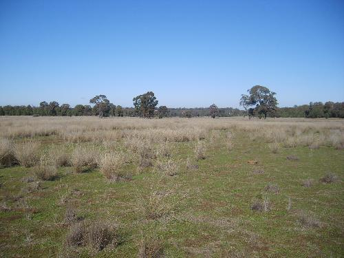 Property For Sold Mendooran 2842 NSW 12