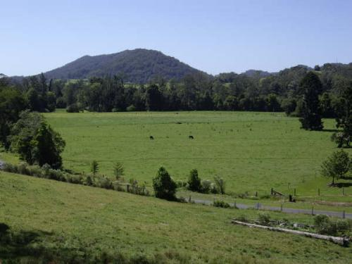 Property For Sold Coffs Harbour 2450 NSW 3