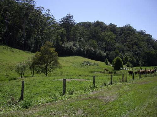 Property For Sold Coffs Harbour 2450 NSW 6