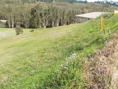 Property For Sold Macksville 2447 NSW 8