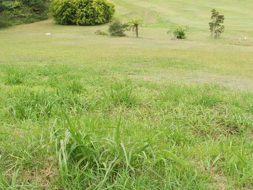 Property For Sold Macksville 2447 NSW 10