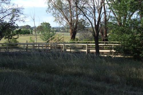 Property For Sold Orange 2800 NSW 5