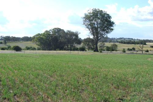 Property For Sold Orange 2800 NSW 6