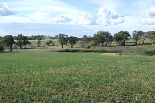 Property For Sold Orange 2800 NSW 9