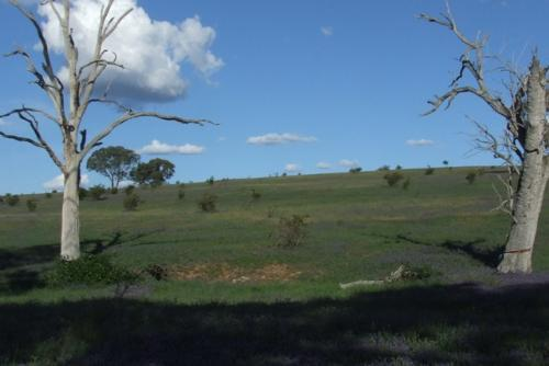 Property For Sold Orange 2800 NSW 10