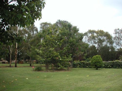 Property For Sold Glen Innes 2370 NSW 2