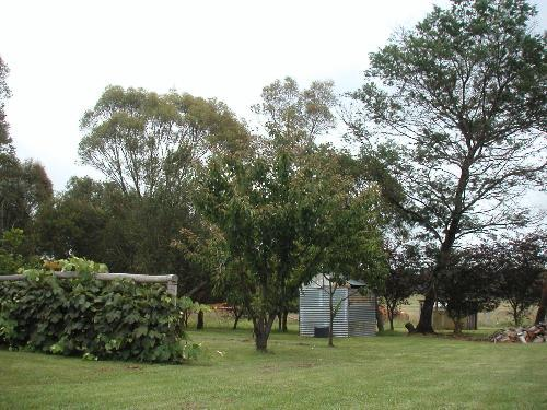 Property For Sold Glen Innes 2370 NSW 5