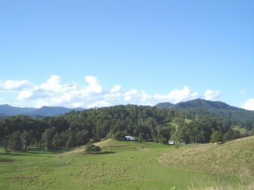 Property For Sale Kyogle 2474 NSW 5
