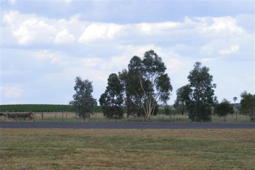 Property For Sale Canowindra 2804 NSW 4