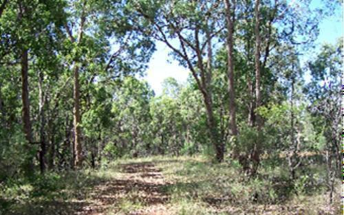 Property For Sold Gilgai 2360 NSW 4