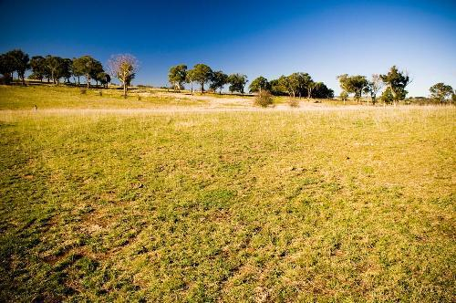 Property For Sale Millthorpe 2798 NSW 2