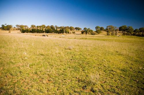 Property For Sale Millthorpe 2798 NSW 6