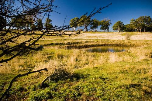 Property For Sale Millthorpe 2798 NSW 12