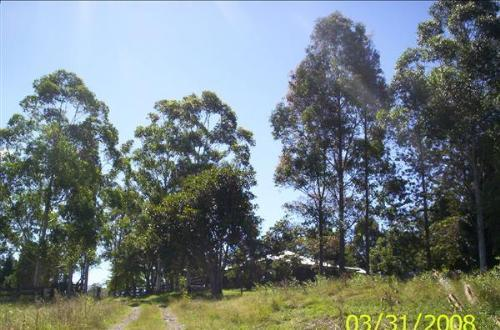 Property For Sold Kyogle 2474 NSW 10