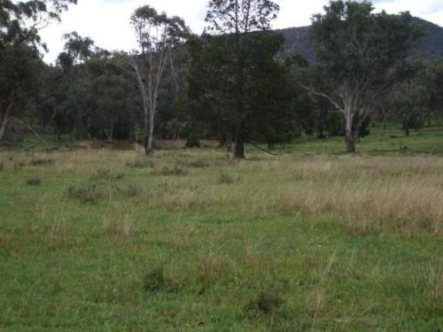 Property For Sold Crowther 2803 NSW 5