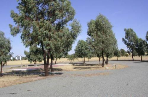 Property For Sale Narrandera 2700 NSW 6
