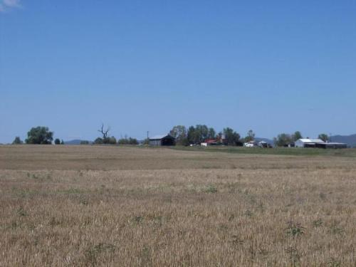 Property For Sale Warialda 2402 NSW 3