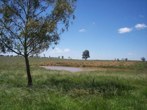 Property For Sale Warialda 2402 NSW 4