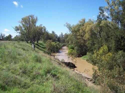 Property For Sale Warialda 2402 NSW 5