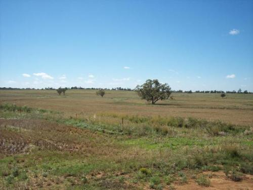Property For Sale Warialda 2402 NSW 6