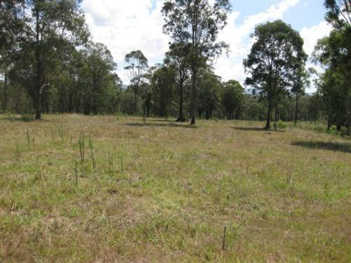 Property For Sold Grose Wold 2753 NSW 4