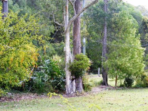 Property For Sale Evans Head 2473 NSW 6