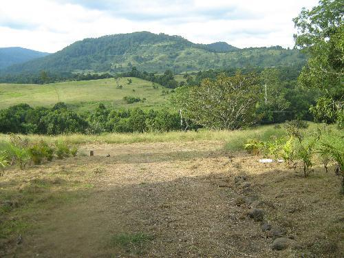 Property For Sold Nimbin 2480 NSW 1