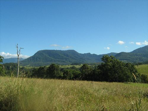 Property For Sold Nimbin 2480 NSW 5