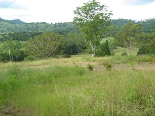 Property For Sold Nimbin 2480 NSW 7