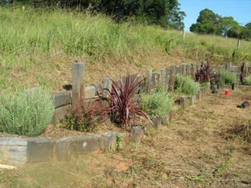 Property For Sold Nimbin 2480 NSW 8