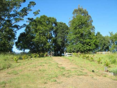 Property For Sold Nimbin 2480 NSW 9