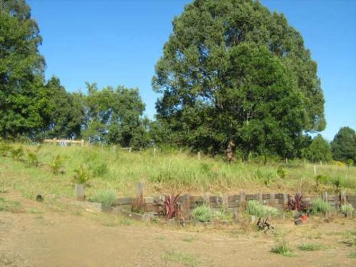 Property For Sold Nimbin 2480 NSW 10