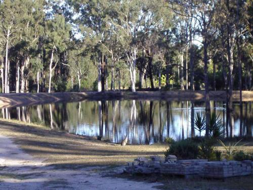 Property For Sale Brooms Head 2463 NSW 3