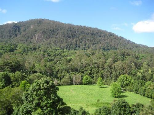 Property For Sale Mullumbimby 2482 NSW 5
