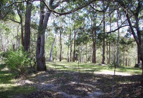 Property For Sold Urunga 2455 NSW 7