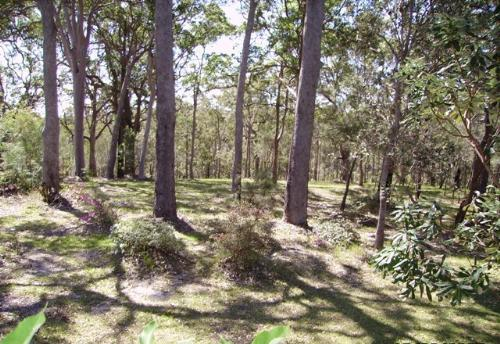 Property For Sold Urunga 2455 NSW 8