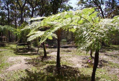 Property For Sold Urunga 2455 NSW 9