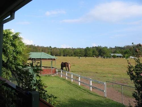 Property For Sale Coffs Harbour 2450 NSW 8
