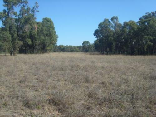 Property For Sale Coolah 2843 NSW 10